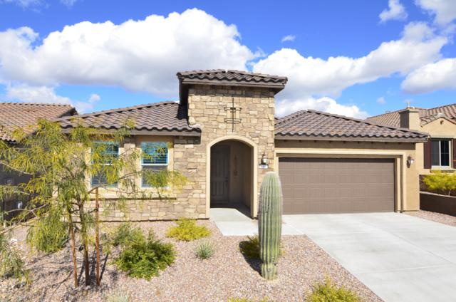 7158 Cape Final Trail, Marana, AZ 85658 (#21905103) :: Gateway Partners at Realty Executives Tucson Elite
