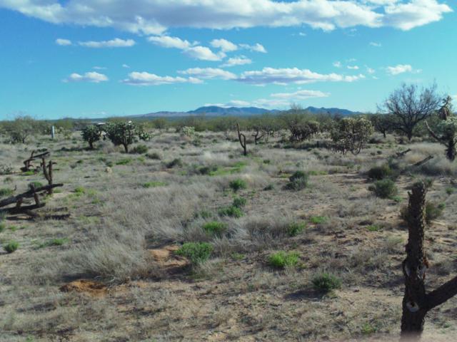 8760 S Marstellar Road, Tucson, AZ 85735 (#21905153) :: The Josh Berkley Team