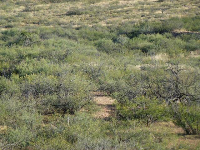 42 ac S Ghost Rider Road #7, Portal, AZ 85632 (#21905187) :: Gateway Partners at Realty Executives Tucson Elite