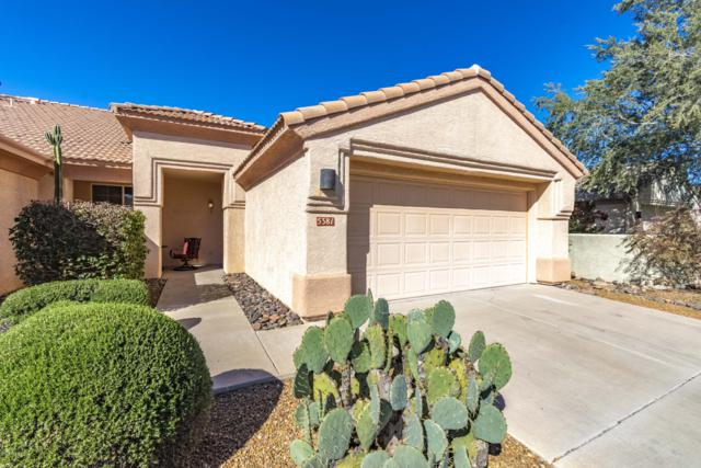 5381 W Owlclover Place, Marana, AZ 85658 (#21905192) :: Gateway Partners at Realty Executives Tucson Elite