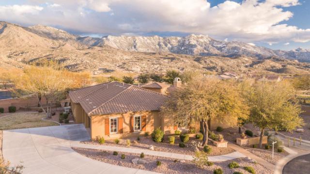36297 S Aspen Lane, Tucson, AZ 85739 (#21905206) :: Gateway Partners at Realty Executives Tucson Elite