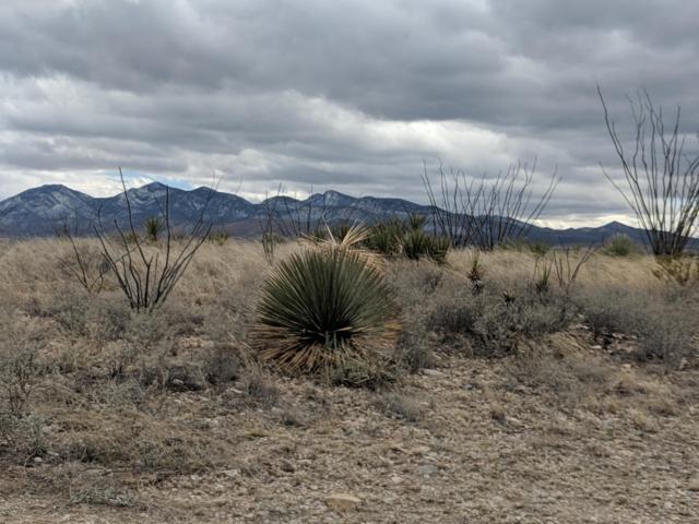24231 E Chickasha Trail #391, Benson, AZ 85602 (#21905207) :: Gateway Partners | Realty Executives Tucson Elite