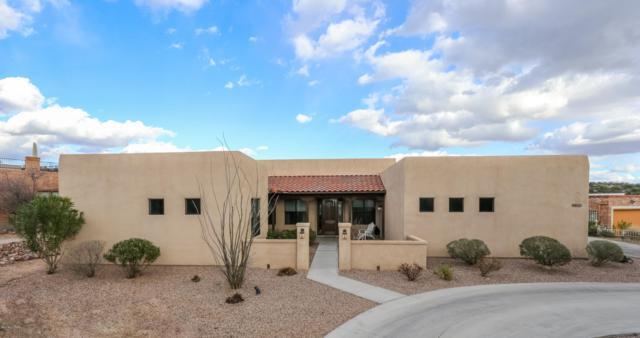 4850 N Paseo Sonoyta, Tucson, AZ 85750 (#21905211) :: Long Realty - The Vallee Gold Team