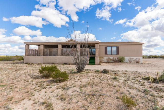 4855 E Mouse Trail, Tucson, AZ 85756 (#21905300) :: The Josh Berkley Team