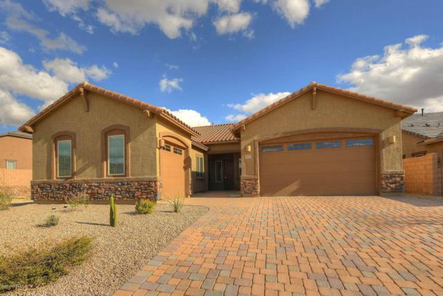 14334 Whitehorn Place, Marana, AZ 85658 (#21905329) :: Long Realty Company