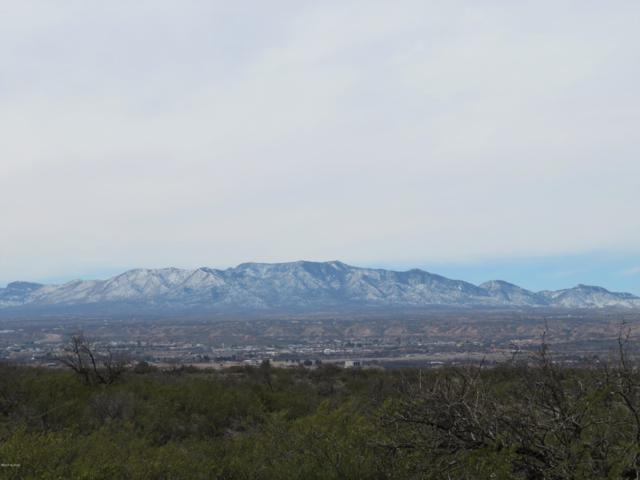 TBD E Horizon View Trail #20, Benson, AZ 85602 (MLS #21905578) :: The Property Partners at eXp Realty