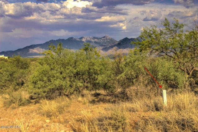 Calle Cinco #92, Green Valley, AZ 85622 (#21905726) :: Keller Williams