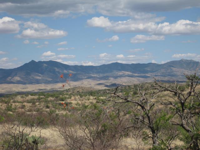 N Seneca #26, Nogales, AZ 85621 (#21905792) :: Gateway Partners