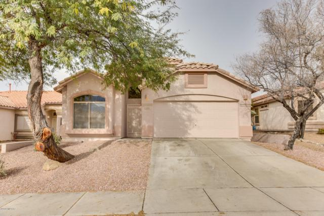12221 N Makayla Canyon Lane, Oro Valley, AZ 85755 (#21906025) :: Long Realty - The Vallee Gold Team