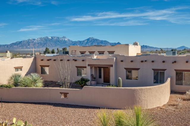 959 S Paseo De La Lira, Green Valley, AZ 85614 (#21906246) :: Long Realty Company