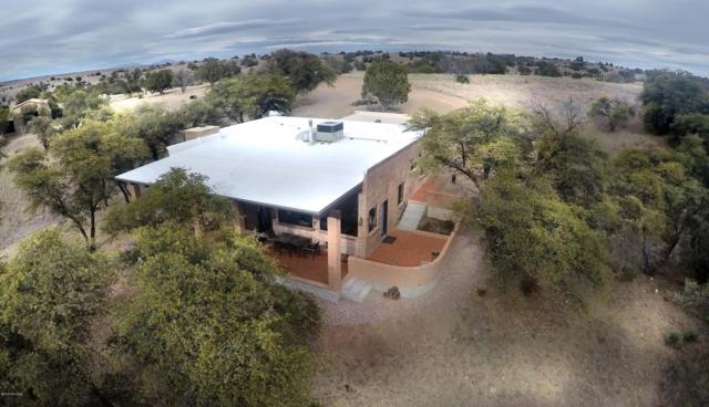90 Callejon Casas Del Arroyo Lane, Sonoita, AZ 85637 (#21906374) :: Long Realty Company