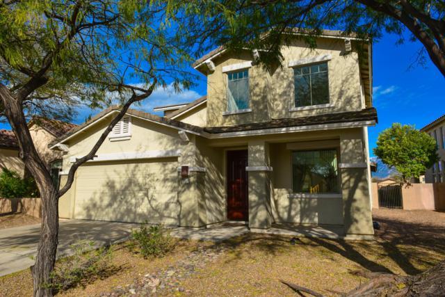 12936 N Salt Cedar Drive, Oro Valley, AZ 85755 (#21906676) :: The Josh Berkley Team