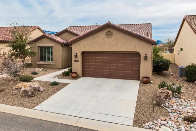 60157 E Arroyo Vista Drive, Oracle, AZ 85623 (#21906822) :: Gateway Partners | Realty Executives Tucson Elite