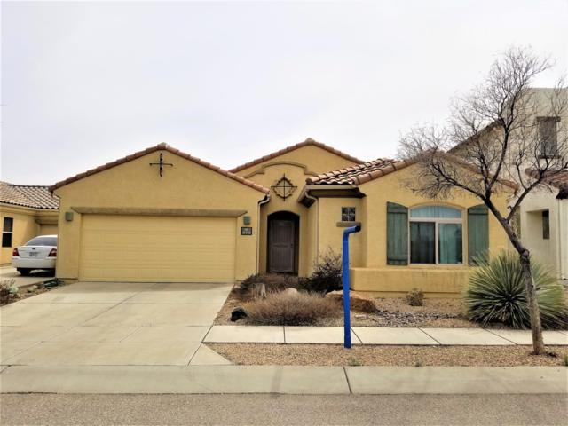 10442 E Painted Turtle Lane, Tucson, AZ 85747 (#21906938) :: Long Realty - The Vallee Gold Team