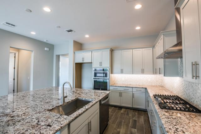 13259 N Chiracahua Peak Drive, Oro Valley, AZ 85755 (#21907009) :: Long Realty - The Vallee Gold Team