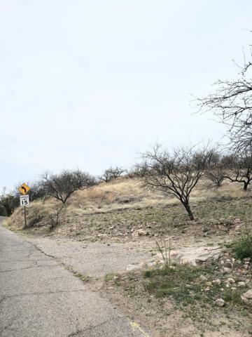 N Macnab Drive #6, Nogales, AZ 85621 (#21907189) :: Long Realty - The Vallee Gold Team