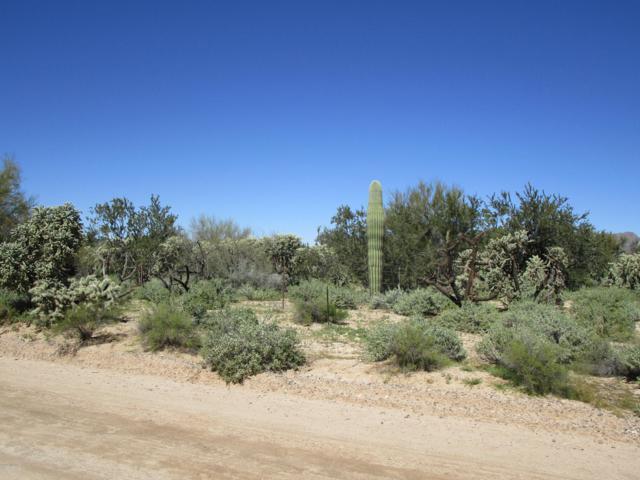 4300 W Potvin Lane, Tucson, AZ 85742 (#21907231) :: Long Realty - The Vallee Gold Team