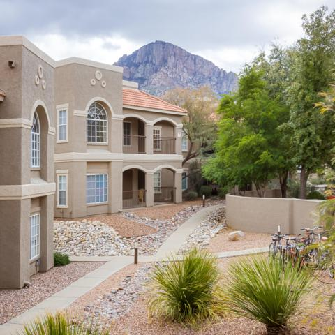 1500 E Pusch Wilderness Drive #5201, Oro Valley, AZ 85737 (#21907280) :: Long Realty Company