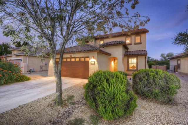 11251 Harvester Drive, Marana, AZ 85653 (MLS #21907431) :: The Property Partners at eXp Realty