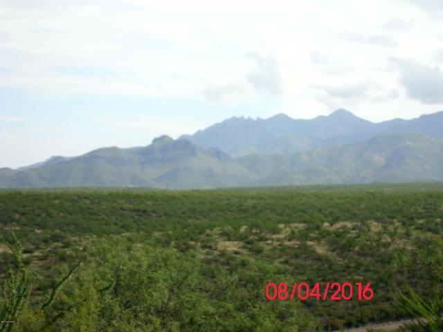 TBD Camino Talavera #68, Tubac, AZ 85646 (#21907433) :: Long Realty Company