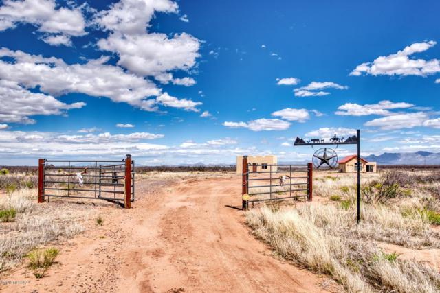 5012 W Drifters Way, Mc Neal, AZ 85617 (#21907447) :: Long Realty Company