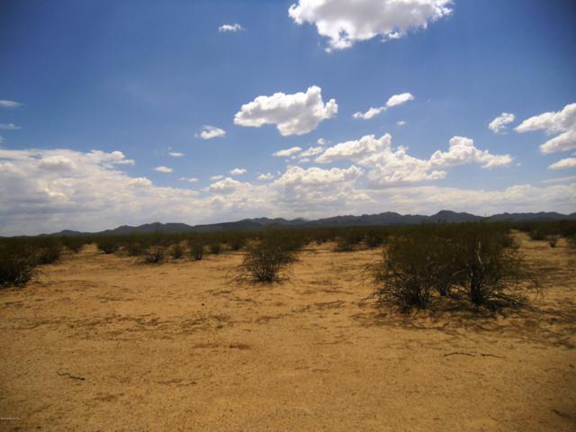 3551 N Little Cody Road #73, Marana, AZ 85653 (MLS #21907461) :: The Property Partners at eXp Realty