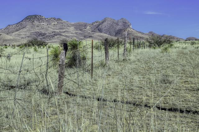No Physical Address A, Elgin, AZ 85611 (#21907515) :: Long Realty Company