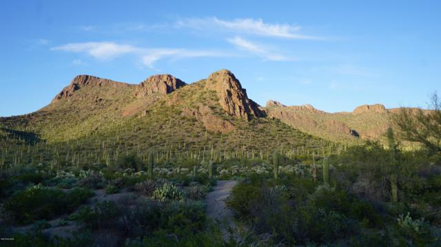 000 N Tula Lane, Tucson, AZ 85743 (#21907552) :: Long Realty Company
