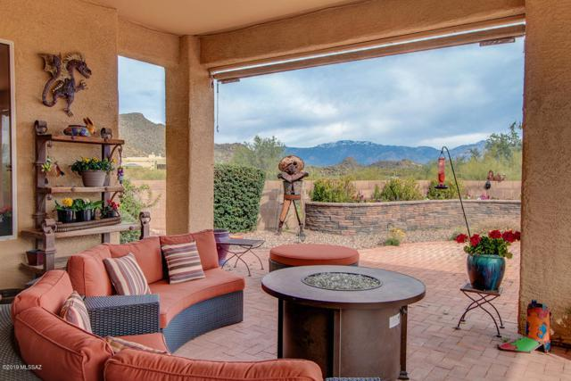 13446 N Holly Grape Drive, Marana, AZ 85658 (MLS #21907582) :: The Property Partners at eXp Realty