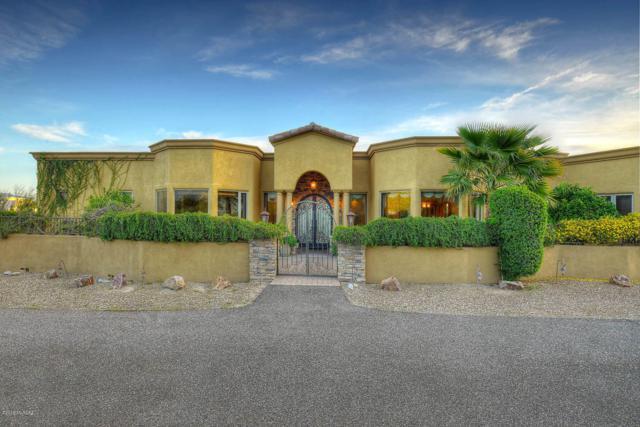 7185 E Little Savannah, Tucson, AZ 85750 (#21907651) :: Long Realty - The Vallee Gold Team