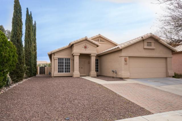 9066 N Safflower Lane, Marana, AZ 85743 (MLS #21907658) :: The Property Partners at eXp Realty