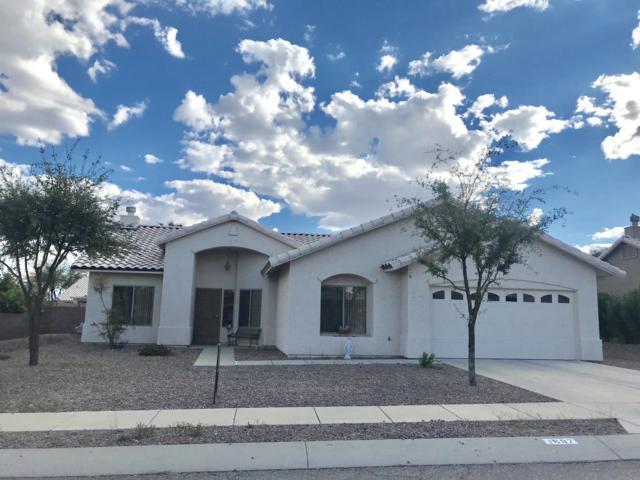 1697 W Corte Del Calvo, Sahuarita, AZ 85629 (MLS #21907675) :: The Property Partners at eXp Realty
