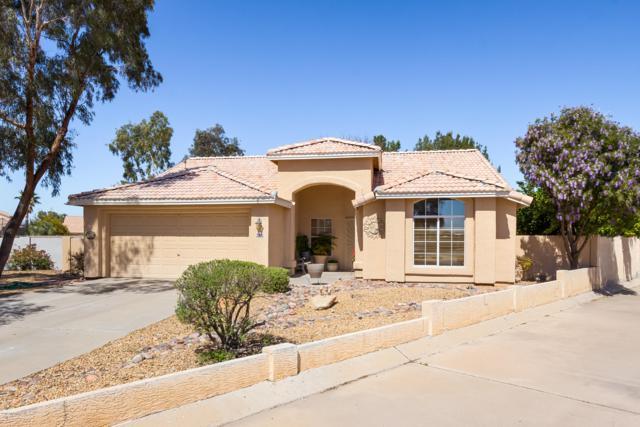 6712 W Alegria Drive, Tucson, AZ 85743 (#21907753) :: The Josh Berkley Team