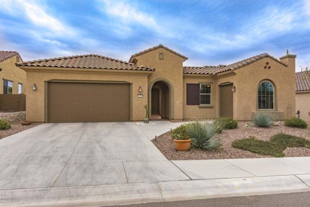 6629 W Tuckup Trail, Marana, AZ 85658 (#21908046) :: Long Realty Company