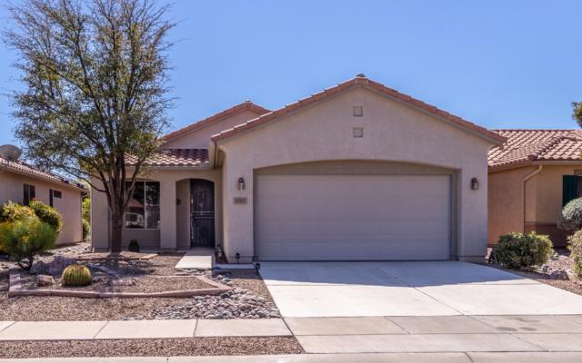 9760 N Sandy Mesa Place, Marana, AZ 85743 (#21908087) :: The Josh Berkley Team