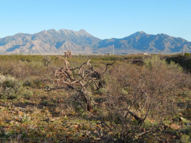 1046 E Mesquite Springs Place #132, Green Valley, AZ 85614 (#21908155) :: Gateway Partners | Realty Executives Tucson Elite