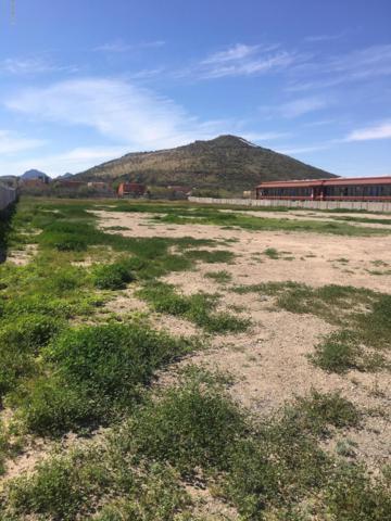 1124 S Farmington Road, Tucson, AZ 85713 (#21908161) :: Gateway Partners | Realty Executives Tucson Elite