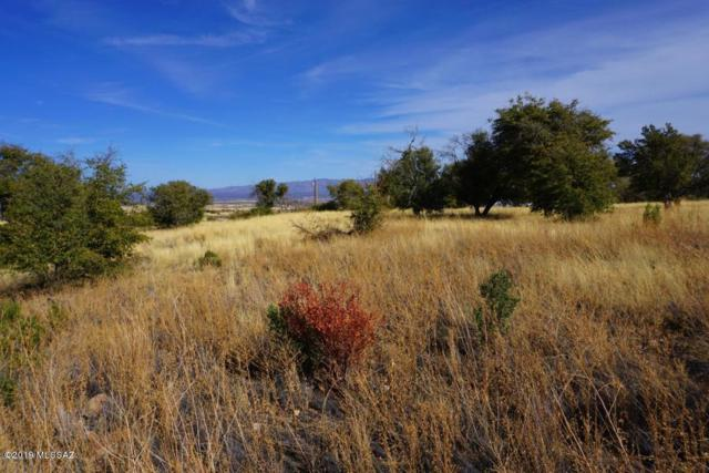 9953 S Deer Trail, Hereford, AZ 85615 (#21908422) :: Long Realty - The Vallee Gold Team