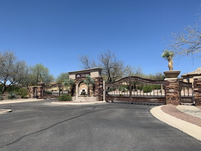 1218 W Casentino Pass W, Oro Valley, AZ 85737 (#21908579) :: Long Realty - The Vallee Gold Team