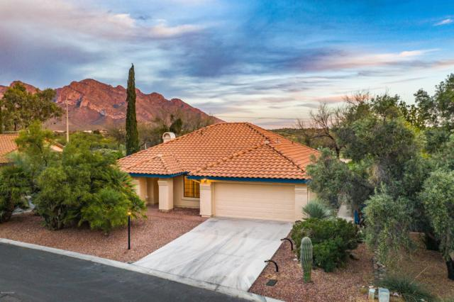 1321 W Sandtrap Way, Oro Valley, AZ 85737 (#21909063) :: Long Realty - The Vallee Gold Team