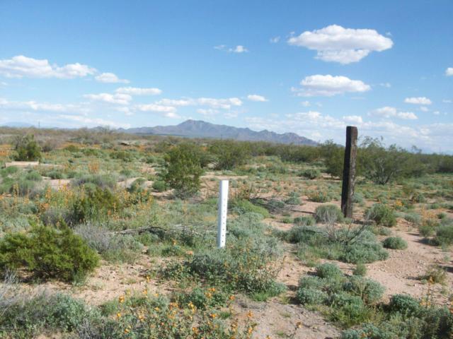 7912 N Dakota Plains Trail, Tucson, AZ 85743 (#21909195) :: Long Realty - The Vallee Gold Team