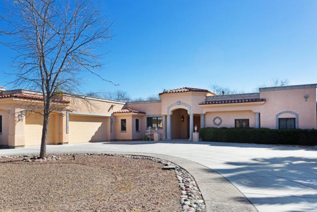 2010 N Forty Niner Drive, Tucson, AZ 85749 (#21909354) :: Long Realty - The Vallee Gold Team