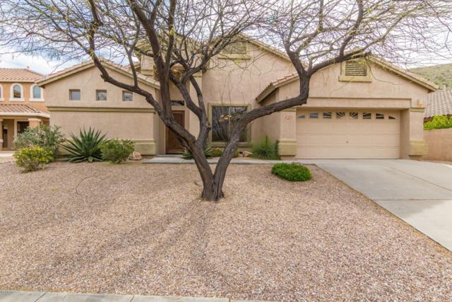 4732 N Tomnitz Place, Tucson, AZ 85750 (#21909621) :: The Local Real Estate Group | Realty Executives