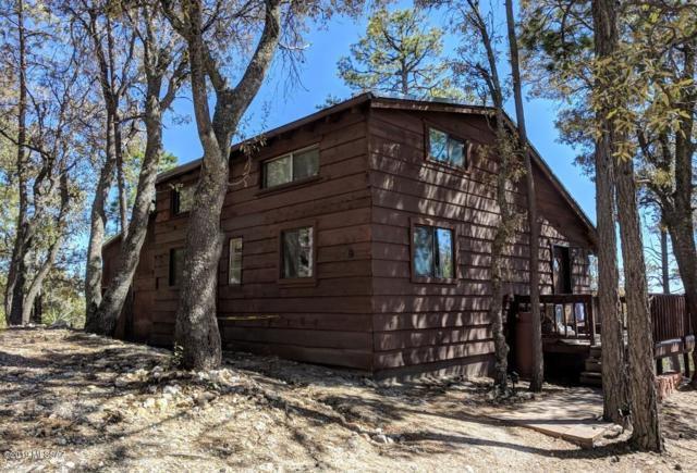 9843 N Willow Canyon Loop, Mt. Lemmon, AZ 85619 (#21909928) :: Long Realty Company
