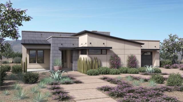 14125 N Los Saguaros Drive, Marana, AZ 85658 (#21909946) :: Long Realty Company