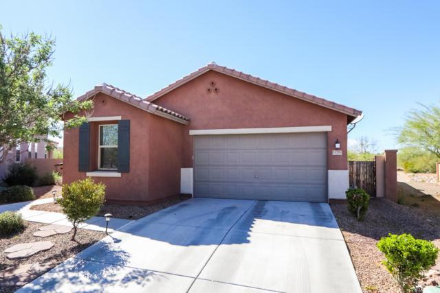 13792 S Camino Acelga, Sahuarita, AZ 85629 (MLS #21910022) :: The Property Partners at eXp Realty