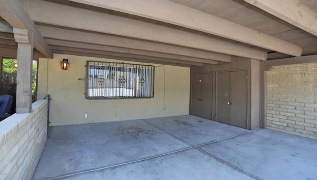 2438 N Shade Tree Circle, Tucson, AZ 85715 (#21910179) :: The Josh Berkley Team