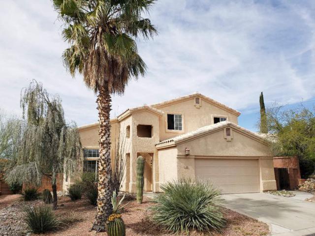 10261 N Wild Turkey Lane, Oro Valley, AZ 85737 (#21910231) :: Long Realty - The Vallee Gold Team