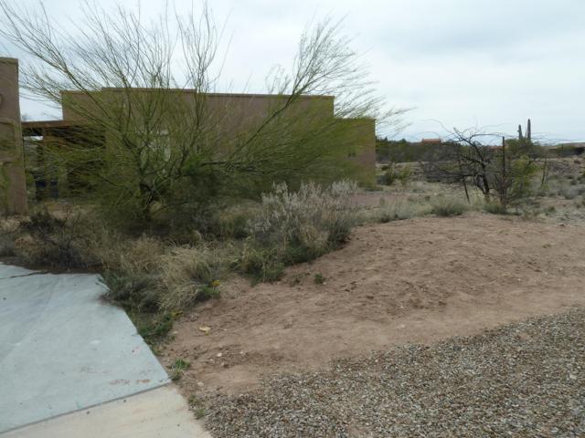 7730 S Galileo Lane, Tucson, AZ 85747 (#21910421) :: Long Realty - The Vallee Gold Team