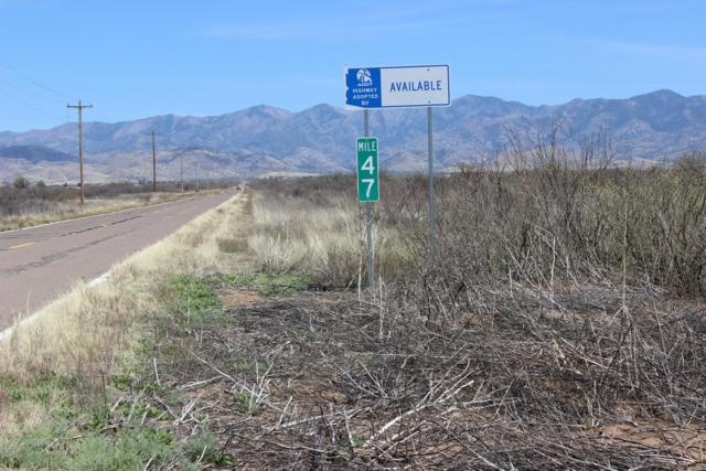 Highway 181 (9 Ac) #0, Pearce, AZ 85625 (#21910425) :: The Local Real Estate Group   Realty Executives